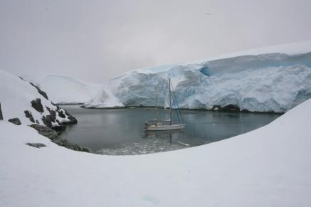 Antartica 2014